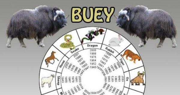 El buey (1901,1913.1925, 1937, 1949, 1961, 1973, 1985,1997, 2009)