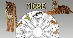 El tigre (1902, 1914, 1926, 1938 1950, 1962, 1974, 1986, 1998, 2010)
