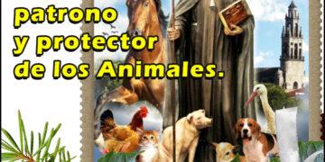 San Antón patrono de los animales