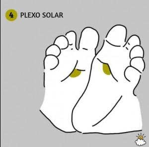 plexosolar
